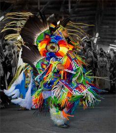 Tsuu T'ina Pow Wow Dancer by Christopher Martin Native American Regalia, Native American Women, Native American History, Pow Wow, Native Indian, Native Art, Native Style, American Day, American Pride