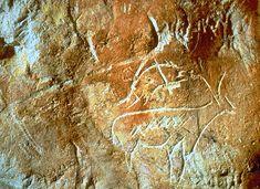 Cosquer - bouquetins gravés Art Pariétal, Paleolithic Art, Cave, Paintings, France, Prehistory, Marseille, Painting, Draw