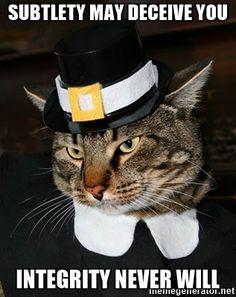 Oliver Furball - Puritan Cat
