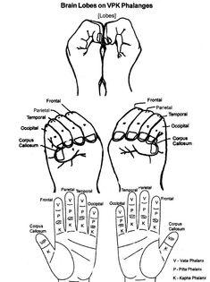 Manual de Diagnostico y Tratamiento Su-Jok.pdf