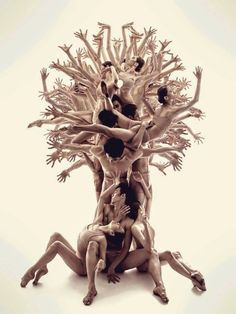 The tree of life photo by Roman Shatsky.Sakartvelo ballet Dance your soul by Catherine LA Rosa Human Tree, Foto Poster, Dance Movement, Dance Poses, Dance Pictures, Just Dance, Tree Of Life, Belle Photo, Human Body