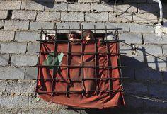 """Des enfants regardent par la """"fenêtre"""" de leur domicile dans la banlieue d'Alger (Algérie), le 8 mai 2012. ZOHRA BENSEMRA / REUTERS"""