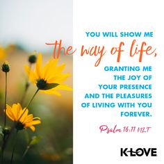 You will show me the way of life, granting me the joy of your presence and the pleasures of living with you forever. –Psalm 16:11 NLT #VerseOfTheDay #Scripture