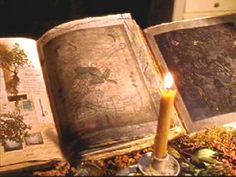 """Book of Shadows/Grimoire - On the New Moon cleanse & purify your book. Then either lay it on or cover w/your pentacle on your altar until the Full Moon. At that time you should sew into the cover five different (well-dried) herbs that correspond to the four elements & the divine. Annointing w/oils works, too. Some choose to prick their thumb & leave a """"stamp"""" on the inside cover or 1st page."""