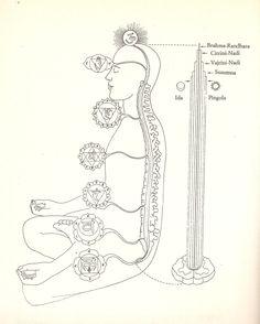 Sushumna, Vajrini-Nadi, Citrini-Nadi, Brahma-Randhra