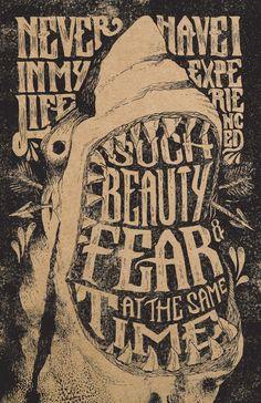 Beauty & Fear by Joshua Noom