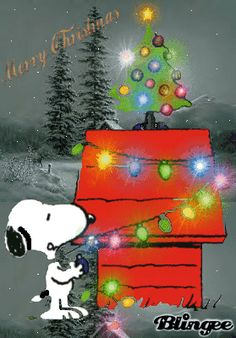 snoopy gets place! Merry Christmas all! Snoopy Love, Charlie Brown Et Snoopy, Snoopy Et Woodstock, Charlie Brown Christmas, Peanuts Christmas, Christmas Cartoons, Christmas Wishes, Christmas Art, Christmas Greetings