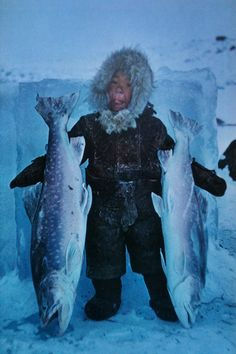 Frozen within minutes of capture, two char stand tongue-high to an eskimo girl guardian. National Geographic -