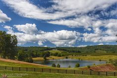 A gorgeous view & afternoon @trumpwinery  Photographed in Charlottesville VA by tpfmariah9999