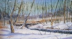 Winters Cloak -- Tyler Park, PA. by Sandy Askey-Adams in the FASO Daily Art Show