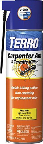 TERRO® Carpenter Ant & Termite Killer can be used indoors and outdoors as a coarse spray, or as a crack and crevice treatment to control carpenter ants, termites, carpenter bees, and more! Wood Wasp, Termite Spray, Kill Carpenter Bees, Terro Ant Killer, Cedar Oil, Spider Mites, Plant Care, Pest Control, Lawn And Garden
