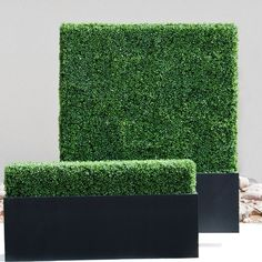Faux boxwood hedges from Hooks and Lattice
