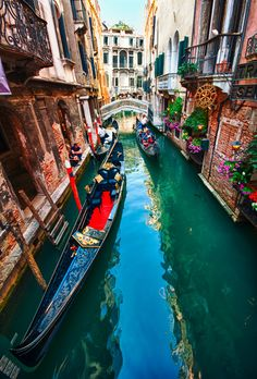 Venice, Italy. So incredibly gorgeous.