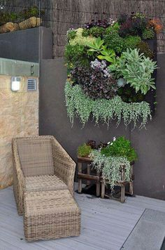 Vertical garden in terrace outdoors city Jardin vertical exterior en terraza de la ciudad urbano DIY Decor Eco