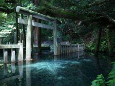 池の中に鳥居が浮かんでいる?その神秘的な風景に思わず見とれてしまった。 茨城県にある鹿島神社の中の御手洗池(みたらしいけ)にあるのである。歴史のある神社で紀元前660年の神武天皇元年に創建された。関東最古の神社なのである。鳥居がまるで浮かんでいるようである。 現在パワースポットとしても人気の場所である。始まりの地ともいわれており、意を決してた人が行くのが良いと言われている。武神の力強いパワーをもらいに行くのも良いかもしれない。
