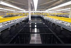 #Датацентр где стоит #сервер которым владеет #хостинг где можно бесплатно разместить #сайт http://goo.gl/rnM57F