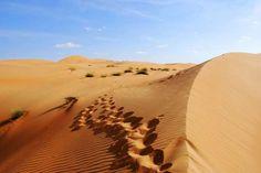 In der Wüste ist vom Kameltrekking bis zum 4WD-Abenteuer alles möglich.