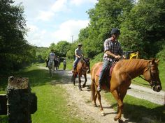 Exmoor horse riding, hiking and seal spotting adventure | Curious Kat's Adventure Club