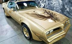 Mile Gold Bird: 1978 Pontiac Trans Am If been looking for a Trans Am, this one could be the golden ticket! And not just because a Special Edition Gold Bird. Not only is it a mile survivor, but also well. 1979 Trans Am, 1978 Pontiac Trans Am, Pontiac Firebird Trans Am, New Model Car, Smokey And The Bandit, Pontiac Cars, Nissan Leaf, New Tyres, Cute Cars