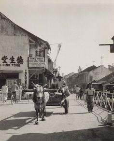 Toko obat Tek Sing Tong, hoek Gang Lombok - Pekodjan in Semarang, Java, Indonesië (1933)