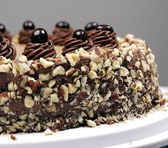 Cappuccino Cheesecake Recipes - Espresso cheesecake with a chocolate crust, topped with chocolate curls, nuts and cocoa.