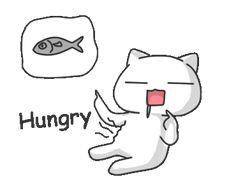 LINE Stickers Pusaki Animated Sugisaka,Pusaki's new animated stickers!,Stickers,Animated Stickers,Example with GIF Animation Hungry Gif, A Certain Scientific Railgun, Amazing Gifs, Line Sticker, Cute Gif, Cute Photos, Emoticon, Anime Love, Cartoon Art