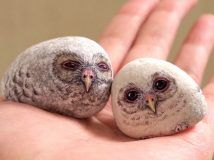 Gorgeous Fun Painted Rock Ideas - This Tiny Blue House Painted Rock Animals, Painted Rocks Kids, Painted Stones, Rock Painting Ideas Easy, Rock Painting Designs, Cool Paintings, Animal Paintings, Mandala Painted Rocks, Pet Rocks