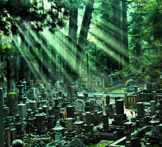 12 of the Most Beautiful Cemeteries Around the World | Mental Floss