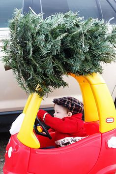 Idea for Christmas Photo Card Pose - Tiny tree tied to the top of a toy car!