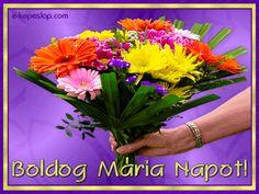 Mária névre szóló névnapi képeslapok - Képeslapküldés - e-kepeslap.com Name Day, Herbs, Marvel, Birthday, Plants, Google, Birthdays, Saint Name Day, Herb