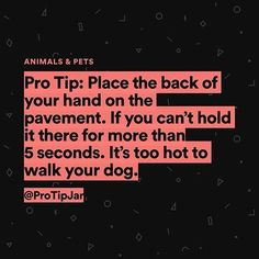 """15.2 tusind Synes godt om, 199 kommentarer – Pro Tip Jar (@protipjar) på Instagram: """"Share this pro tip with your friends to improve their life. (We've changed our name from 8HACK to…"""""""
