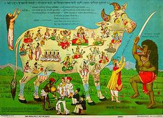 The Sacred cow with 84 Deities, c. 1912, Ravi Varma Press. Link #73: India Is Home to More Than 300 Million Cows! - Cool and Interesting Facts for Kids
