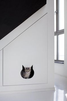 DIY idea if you have cats: Incorporate elements that cater toward feline curiosity into your designs
