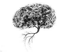Jak si srovnat psychiku a sebevědomí — Břicháč Tom Dandelion, Flowers, Plants, Diet, Psychology, Dandelions, Plant, Taraxacum Officinale, Royal Icing Flowers