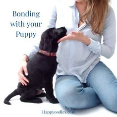 How to Create a Lasting Bond with your Puppy - Happyoodles.com