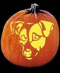 Jack Russell dog pumpkin carving idea