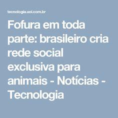 Fofura em toda parte: brasileiro cria rede social exclusiva para animais - Notícias - Tecnologia