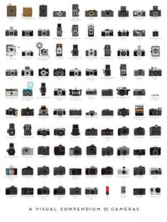 Em- this one's for you...A Visual Compendium of Cameras Print by Popchartlab on Etsy, $28.00