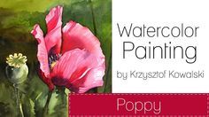 Watercolor painting - Poppy
