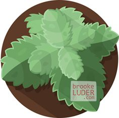 Mint   Flat Vector Art Illustration   Herbs & Spices by Brooke Luder   www.brookeluder.com Stock Art, Vector Art, Art Pieces, Spices, Mint, Herbs, Illustration, Pattern, Spice