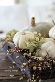 FRENCH COUNTRY COTTAGE: Friday Favorites~ Fall is in the Air
