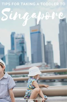 Singapore Family Travel: The Best Things to do in Singapore with a Toddler - This post has everything you need to know about visiting Singapore with a toddler or young child. Whether you're in Singapore with kids for a layover or making it your family travel destination, this guide shares tips and advice for visiting Singapore with toddlers, and all the best things to do in Singapore with a toddler. #toddler #Singapore #toddlers #travel #tips #guide