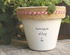 "4"" Tarragon Alley » Tarragon Herb Indoor and Outdoor Pot or Planter"