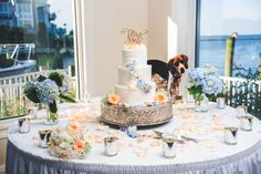 When your dog can't make it to your wedding. Chesapeake Beach Resort wedding, Maryland