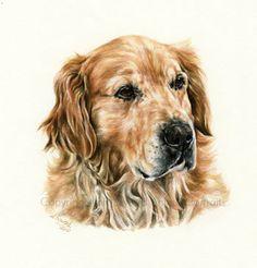 Milo (artist ~ Ann Seward)