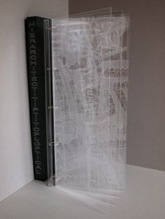 Tina_Flau, Hierarchitectitiptitoploftical, 2011, 9 scratch drawings on Acrylic glass in special handmade box,