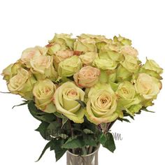 FiftyFlowers.com - Green Fashion Rose