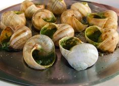 Classic French Escargot Recipe. An excellent appetizer with French Onion soup.