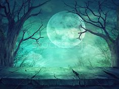 Spooky forest with full moon and wooden table stock photo (c) mythja (#7357505) | Stockfresh