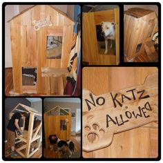 Totally Getting A Dog Bunk Bed For My Dogs | Puppies | Pinterest | Bunk Bed,  Dog And Dog Beds